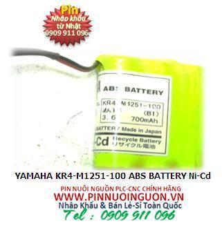 YAMAHA KR4-M1251-100 ABS BATTERY Ni-Cd KR4M1251100 | hàng có sẳn