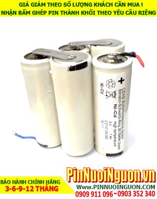 Pin đèn Exit thoát hiểm 6v D7000mAh; Pin đèn khẩn cấp 6v D7000mAh; Pin đèn sự cố 6v D7000mAh; Pin sạc NiMh 6v D7000mAh