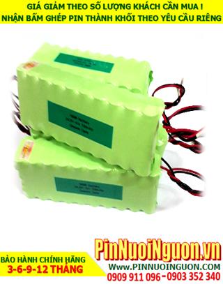 Pin sạc đèn Exit Paragon 24v-AA700mAh, Pin đèn khẩn cấp thoát hiểm Paragon 24v-AA700mAh chính hãng có chứng chỉ C/O nhà máy| Bảo hành 1 năm